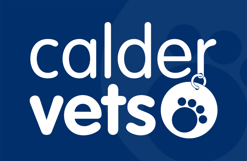 Registered Veterinary Nurse - Wakefield
