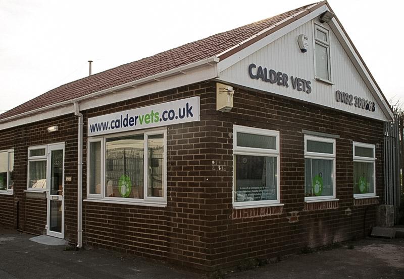 Calder vets at Tingley