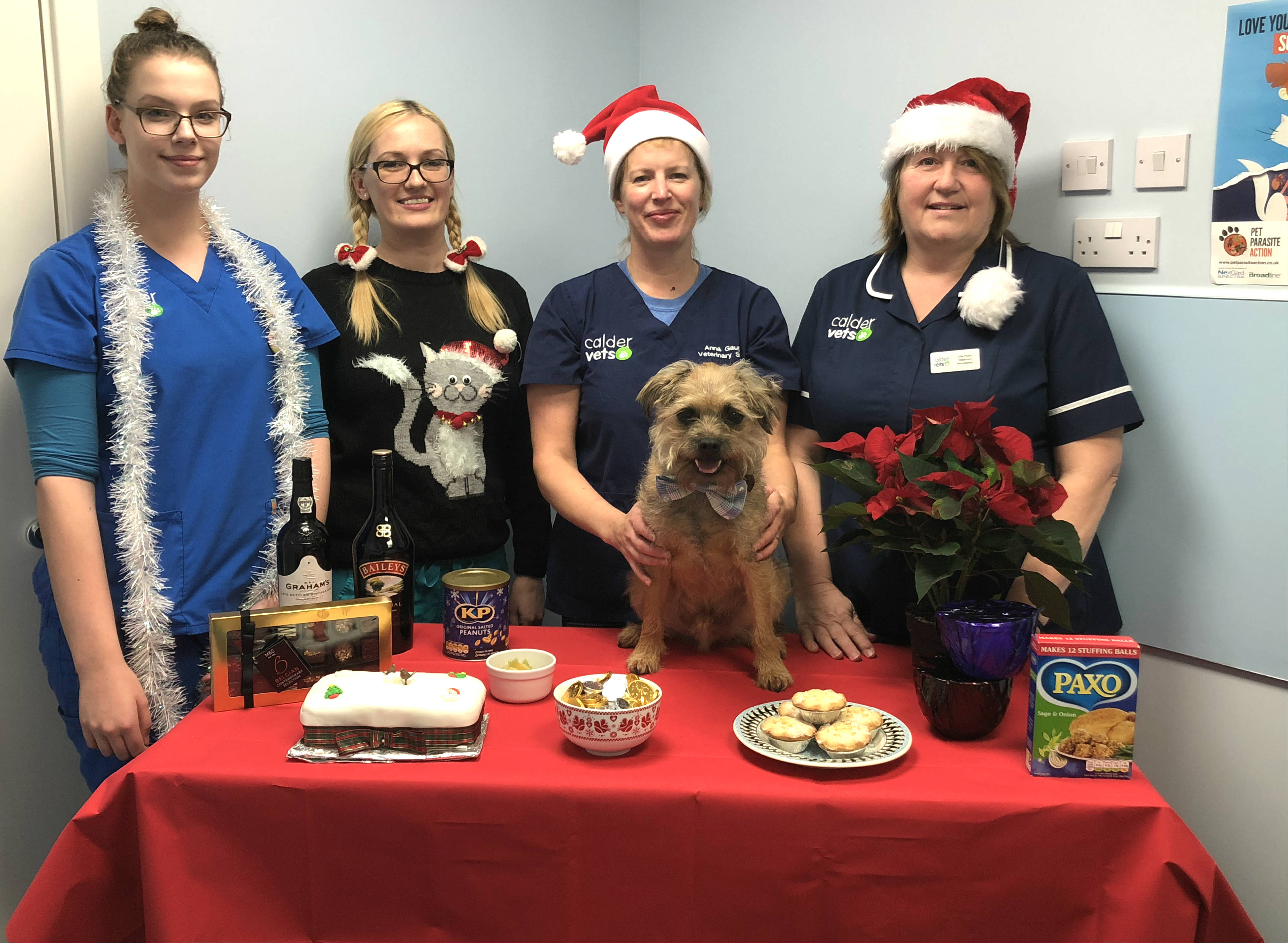Paws for thought and protect pets at Christmas